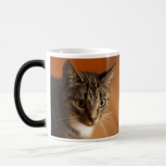 """""""Say Whaat?"""" Cat Cup - exclusively from MogsOnMugs Mugs"""