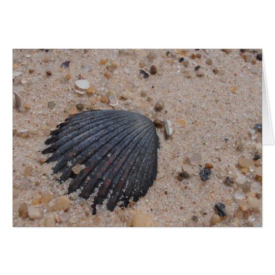 Scallop Shell Card