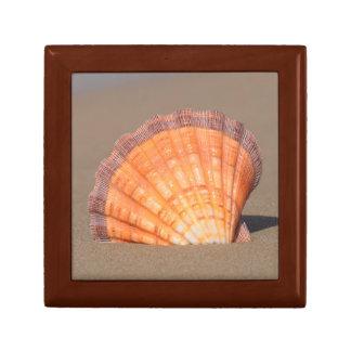 Scallop Shell| Crete, Greece Small Square Gift Box