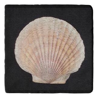 Scallop Shell Custom Marble Stone Trivet