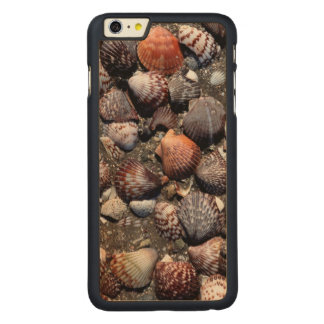 Scalloped Colorful Seashells On A Black Sand Carved Maple iPhone 6 Plus Case