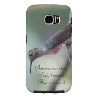 Scaly-breasted Hummingbird Samsung Galaxy S6 Cases