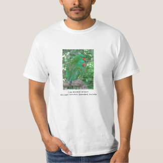 Scaly Breasted Lorikeets T Shirts