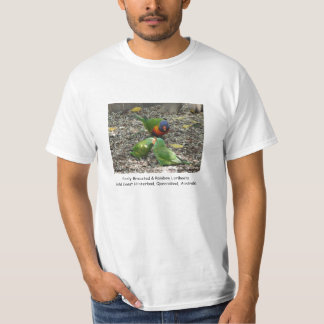 Scaly Breasted & Rainbow Lorikeets T-Shirt