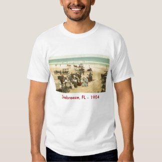 scan0002, Seabreeze, FL - 1904 T Shirts