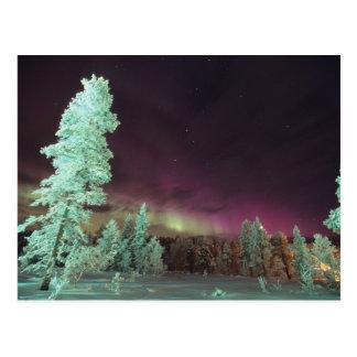 Scandinavia, Finland, Lapland, Kakslauttanen, Postcard
