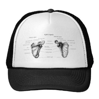 Scapula Details Mesh Hat