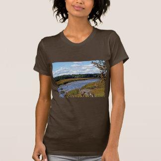 Scarborough Marsh (saltwater), Maine T-Shirt