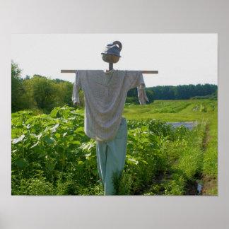 Scarecrow In Garden Field Nature Poster