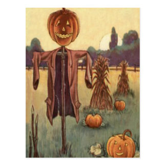 Scarecrow Jack O Lantern Pumpkin Postcard