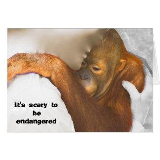 Scared Endangered Orangutan Card
