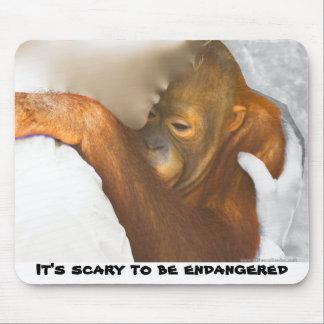 Scared Endangered Orangutan Mouse Pad