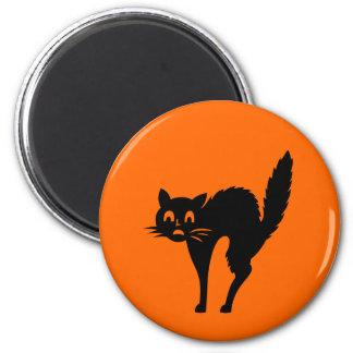 Scared Halloween Cat Fun Spooky Orange Magnet