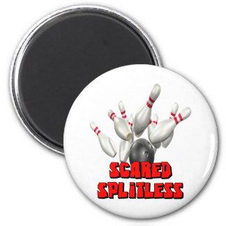 Scared Splitless Magnet