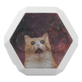 scaredy cat in space