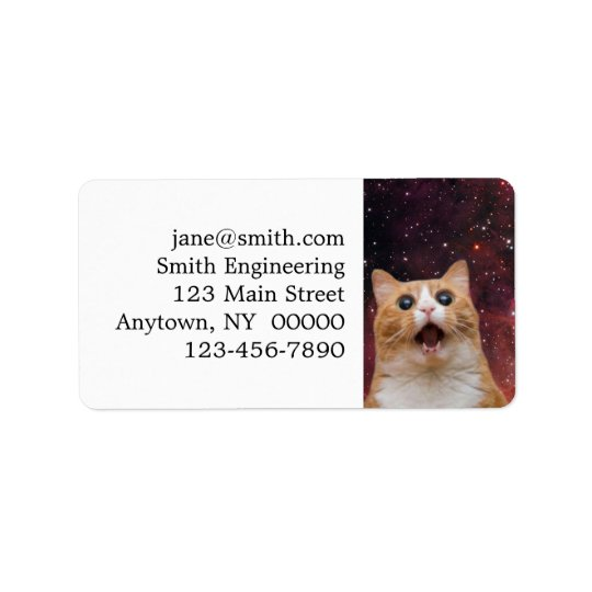 scaredy cat in space address label