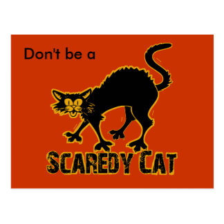 Scaredy Cat Postcard