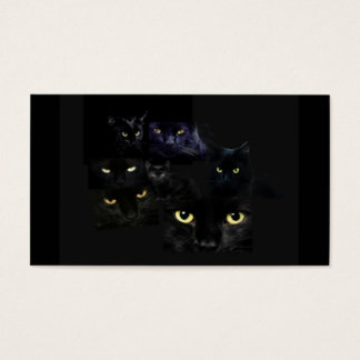Scaredy Cats Business Card