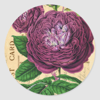 Scarlet Beauty Rose Classic Round Sticker