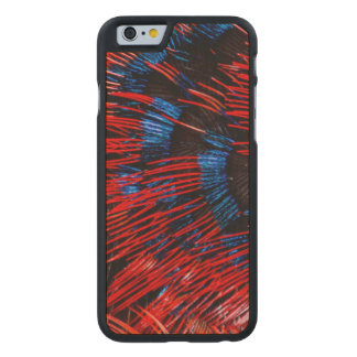 Scarlet-Chested Sunbird Feathers Carved Maple iPhone 6 Case