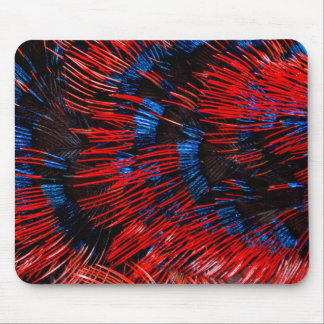 Scarlet-Chested Sunbird Feathers Mouse Mat