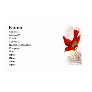 Scarlet Finch Double-Sided Standard Business Cards (Pack Of 100)