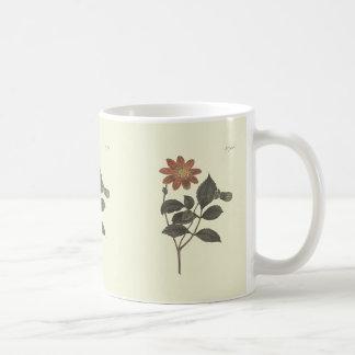 Scarlet Flowered Dahlia Botanical Illustration Coffee Mug
