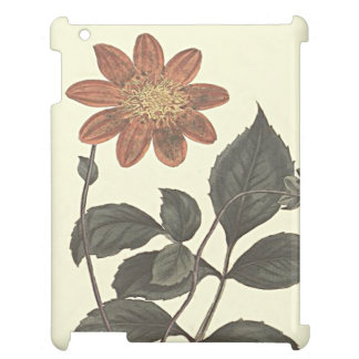 Scarlet Flowered Dahlia Botanical Illustration Cover For The iPad