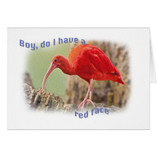 Scarlet Ibis Bird Belated Birthday Card