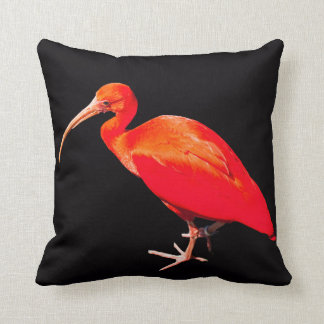 Scarlet Ibis Cushion