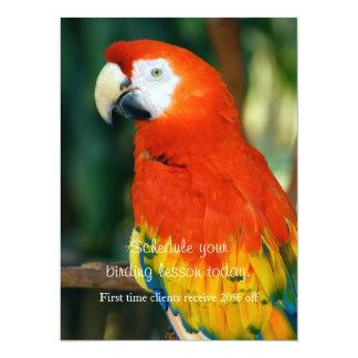 Scarlet Macaw 14 Cm X 19 Cm Invitation Card