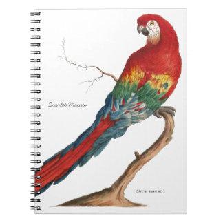 Scarlet Macaw, Ara macao Spiral Notebook