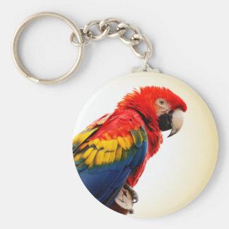 Scarlet Macaw Basic Round Button Key Ring