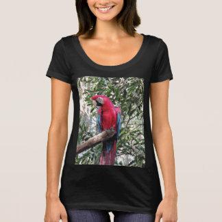 Scarlet Macaw bird - Woman's Tshirt