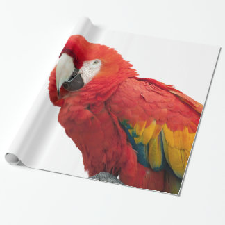 Scarlet Macaw Bird Wrapping Paper