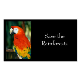 Scarlet Macaw Business Card Templates