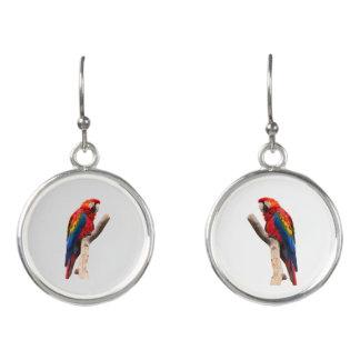 Scarlet Macaw Earrings