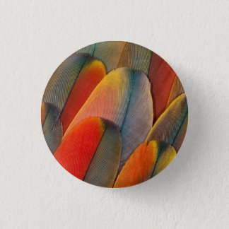 Scarlet Macaw Feather Close-Up 3 Cm Round Badge