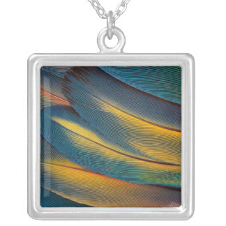 Scarlet Macaw feather close up Silver Plated Necklace