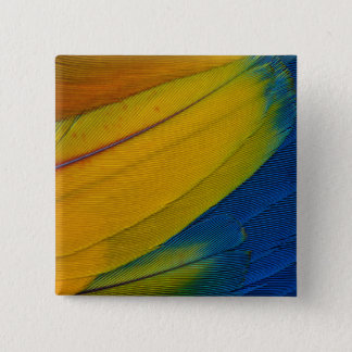 Scarlet Macaw Feathers Close-Up 15 Cm Square Badge