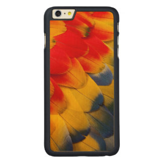 Scarlet Macaw feathers close-up Carved® Maple iPhone 6 Plus Case