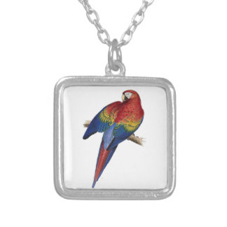 Scarlet Macaw Illustration Silver Plated Necklace