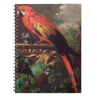 Scarlet Macaw in a Landscape (oil on canvas) Notebooks