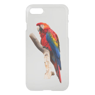 Scarlet Macaw iPhone 8/7 Case