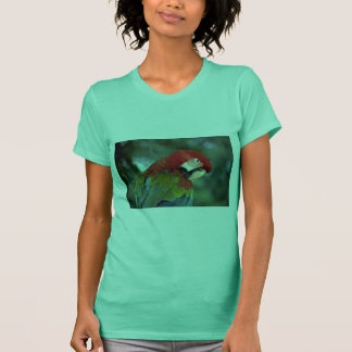 Scarlet macaw, Singapore T-Shirt
