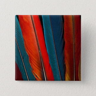 Scarlet Macaw Tail Feathers 15 Cm Square Badge
