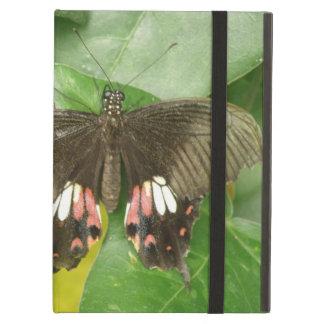 Scarlet Swallowtail Butterfly iPad Case