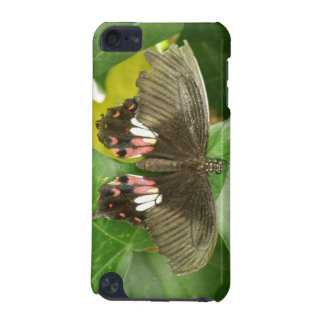 Scarlet Swallowtail Butterfly  iPod Touch 5G Case