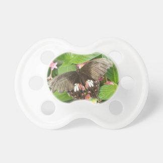 Scarlet Swallowtail Butterfly Macro Pacifier