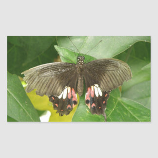 Scarlet Swallowtail Butterfly Stickers